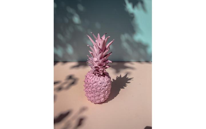 pineapple-pink-emma-hartvig-header